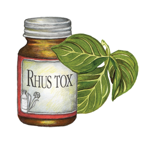 medicines for back pain-Rhus Tox