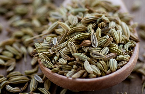 medicines for constipation-Fennel seed